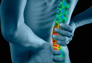 493x335_low_back_pain_overview_slideshow