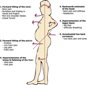 body-changes-during-pregnancy